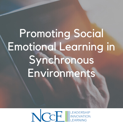 Promoting Social Emotional Learning in Synchronous Environments
